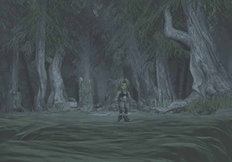 Zidane in the Evil Forest