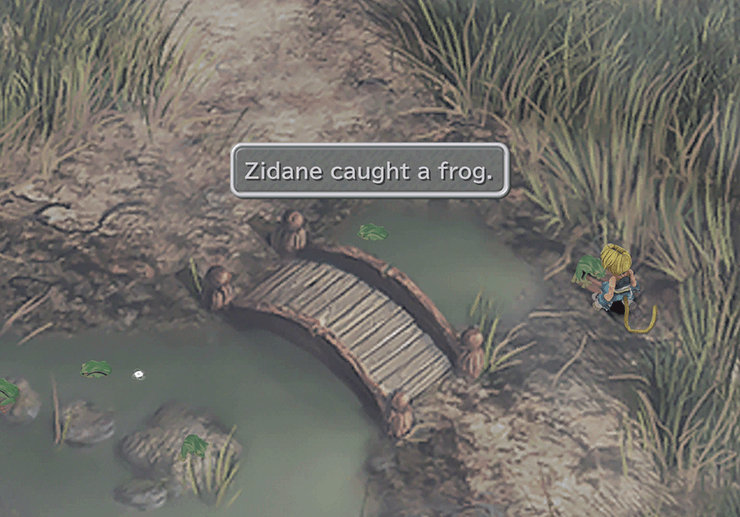 Zidane caught a frog