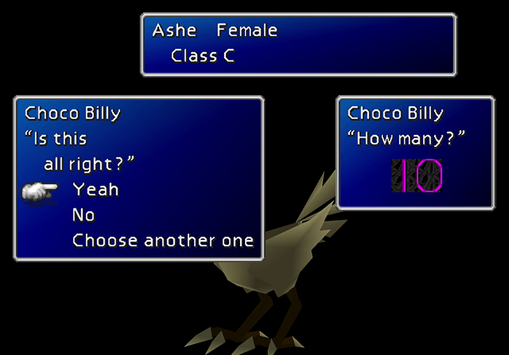 Chole's Chocobo Inspection