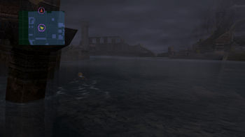 Tidus swimming in the ruins