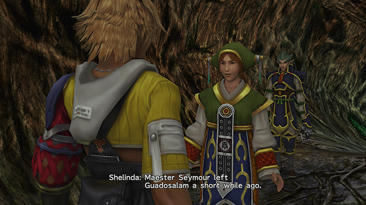 Tidus speaking to Shelinda at the exit of Guadosalam