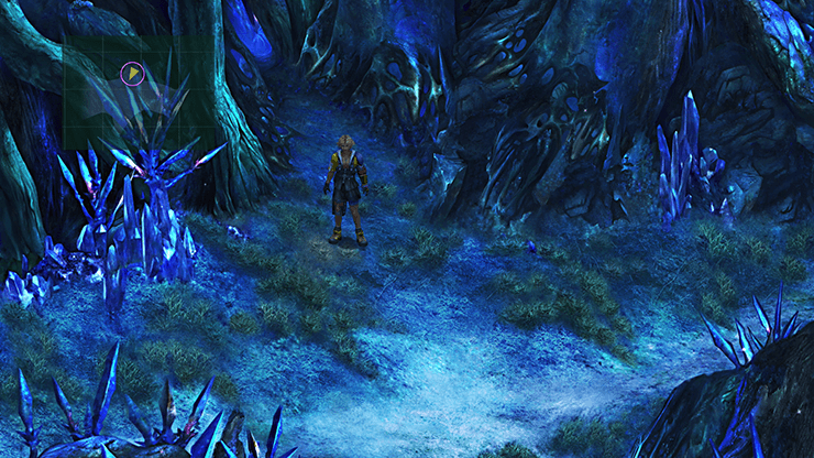 Tidus traveling through the trails of Macalania Woods