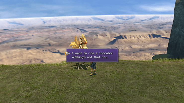 Tidus speaking to the Chocobo Trainer in the Calm Lands